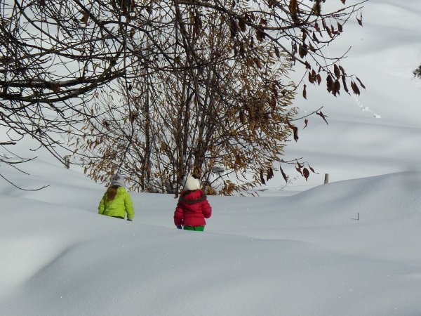 Balades-neige-raquette