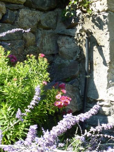 Gite-des-fleurs-sur-la-terrasse-en-ete