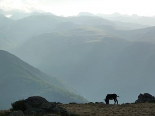 Depuis la montagne d'Appy, vers les sommets des Bésines et de l'Aston